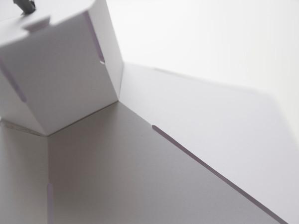 Redefining-Paper-10-Burneside-Shade-Laura-Nelson