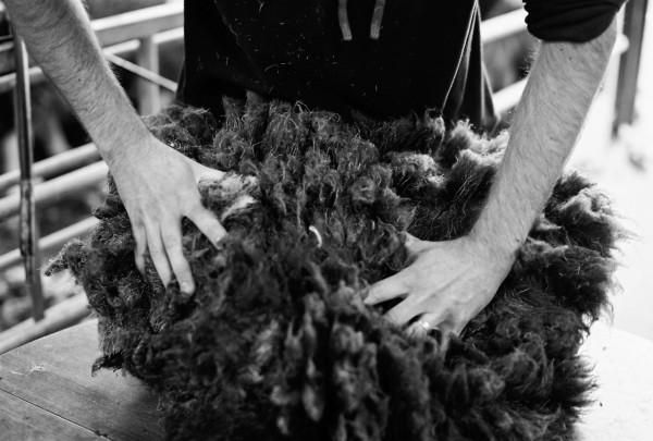 Solidwool-Herdwick-wool