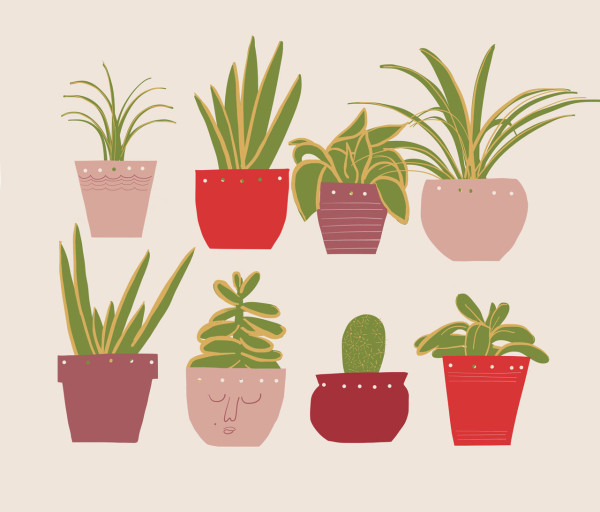 becky-simpson-illustration-plants-01