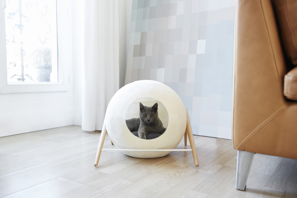 Meyou: Classy Furniture for Classy Cats