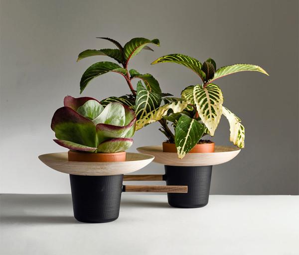 New-Mexico-Nir-Meiri-design-studio-3