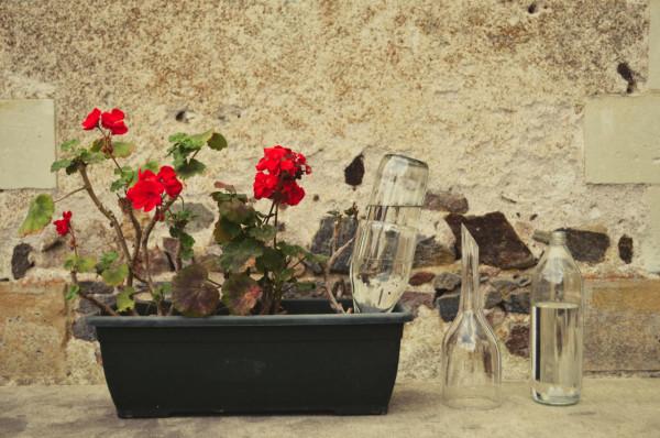glasslab-Hadrien-Venat