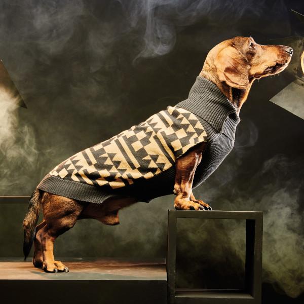 stylish_modern_patterned_dog_sweater_coat_pepito_co-dogmilk
