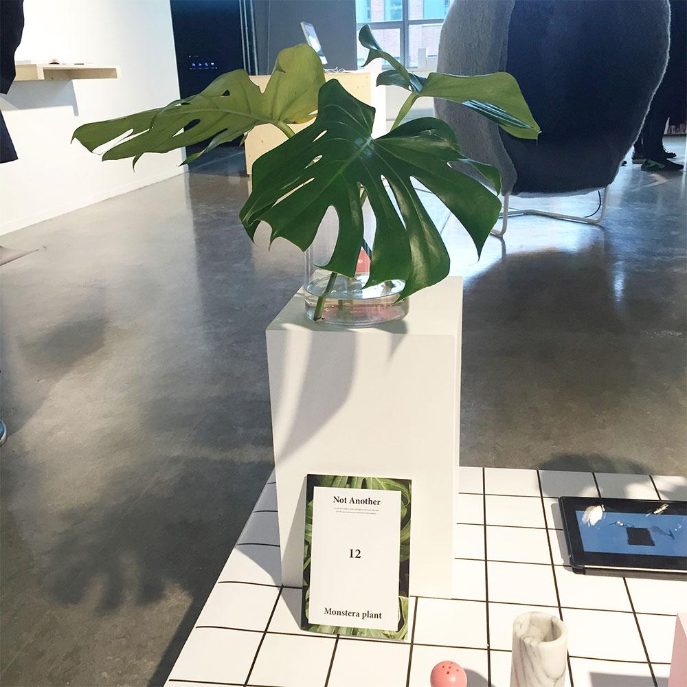 Design_Academy_Eindhoven_Graduate_Show_01