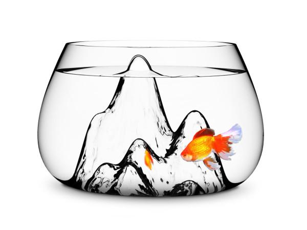 GiftGuide2015-Under100-6-Underwater-fishbowl