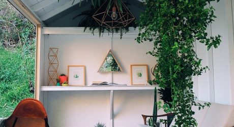 The Tiny Tool Shed Backyard Escape Project