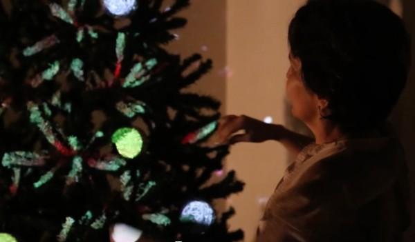 Ambos-Christmas-tree-04