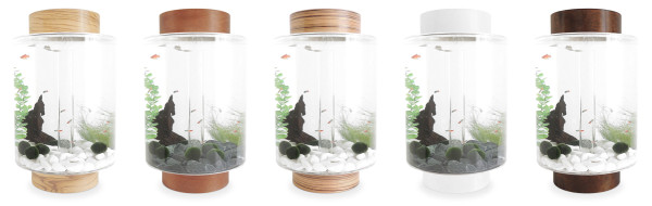 5 Norrom Aquarium Combinations