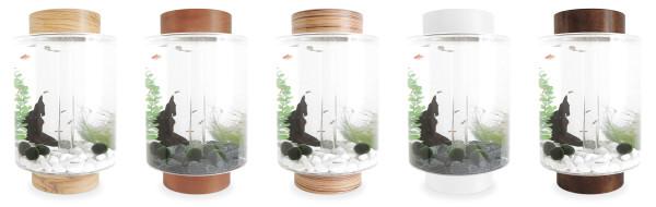 5 Norrom Aquarium Combinations