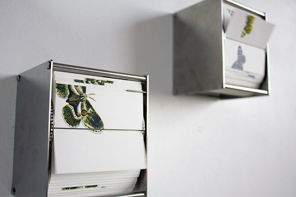 Making Butterflies: The Perpetual Flip Books of Juan Fontanive