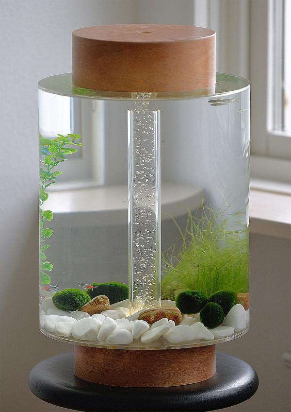 Norrom-Aquarium-1-2