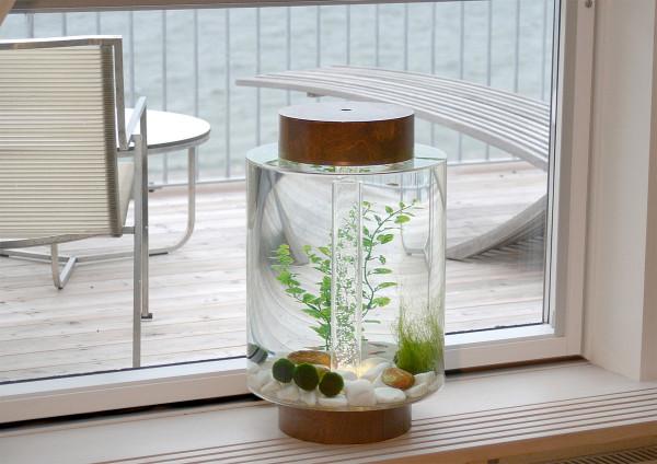 Norrom-Aquarium-5