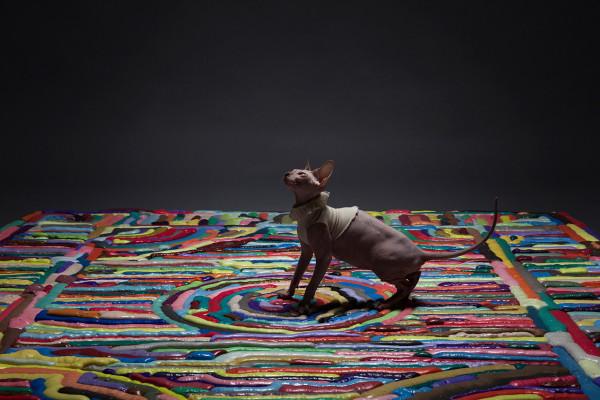 Showdown-Foam-Carpets-13