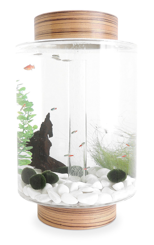 Home Aquarium Gets A Scandinavian Redesign