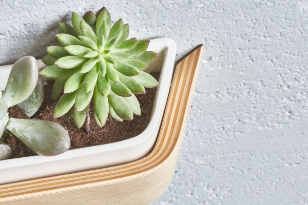 Grovemade-planter-2