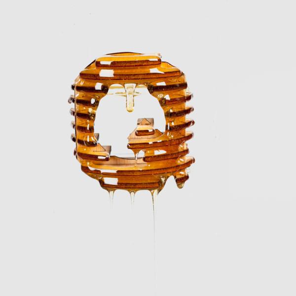 Delicios-Typography-Experimentation-Franc-Navarro-18