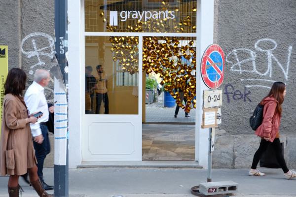 murmurations-lighting-graypants-17