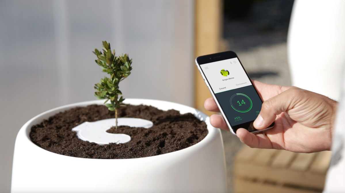 Bios Incube Turns Your Body Into a Tree After You Die