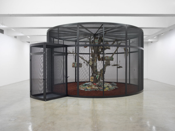The Library for the Birds of New York, 2016