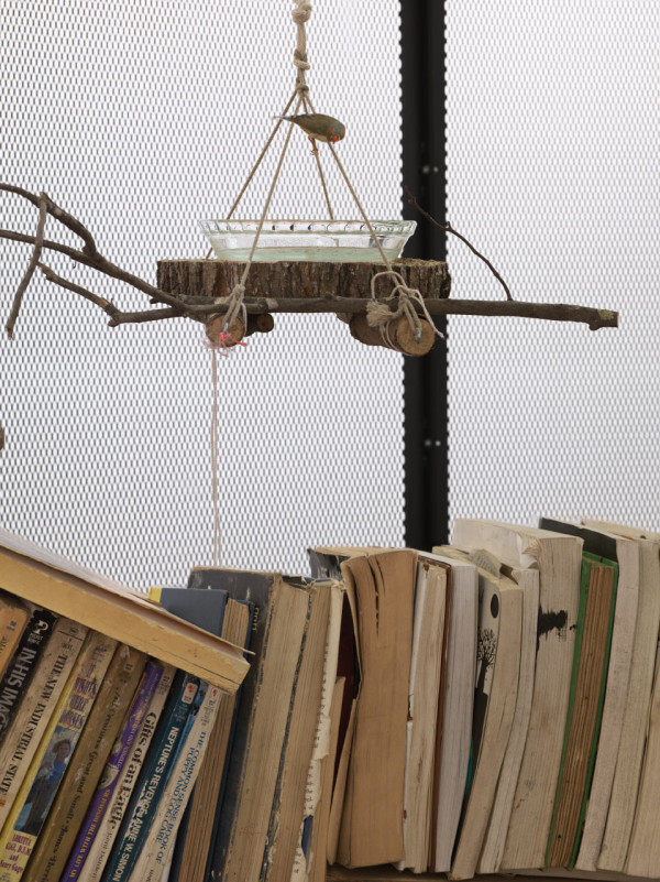 The Library for the Birds of New York (detail) 2016