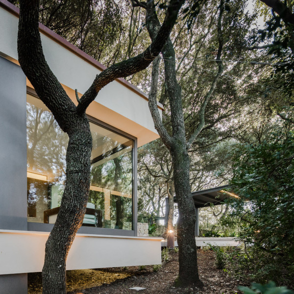 House-In-The-Woods-Officina29-Architetti-5