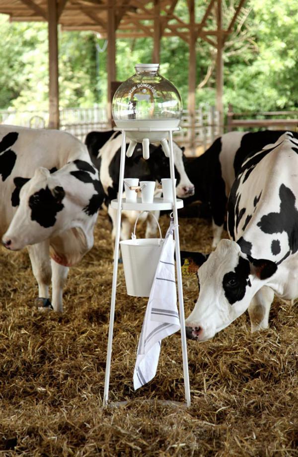 Milk-Lab-Milk-Factory-exhibit-3
