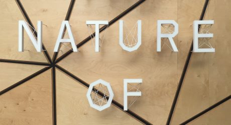 MDW16: The Nature of Motion