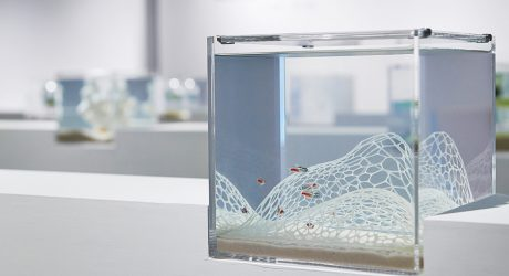 Haruka Misawa's Enchanting 3D Printed Waterscape Aquariums