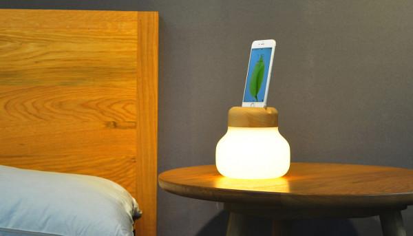 Mushroom Lamp ZISION 13