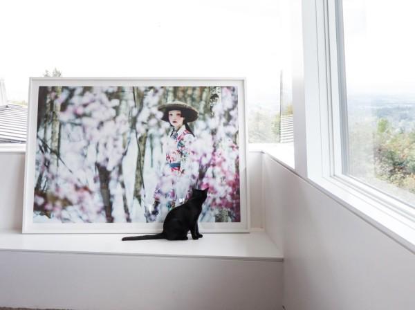 large format photo cherry blossom by Danil Golovkin