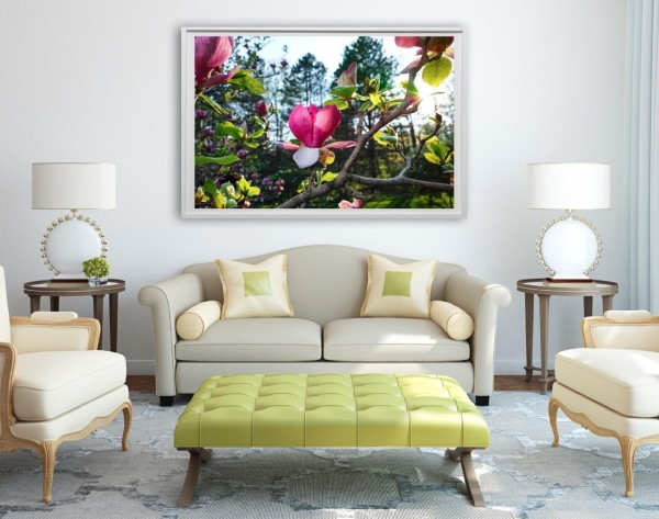 large format photo flowers