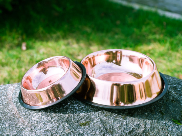 copper_dog_bowl_cubowl