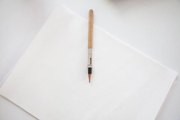 shes-mercedes-Frida-Escobedo-pencil