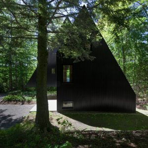 FAHOUSE: A Double Triangular House in the Forest