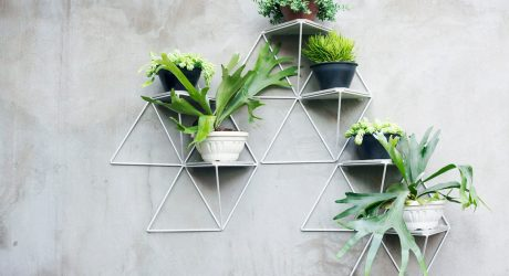 Garden Modules by Luisa + Lilian Parrado