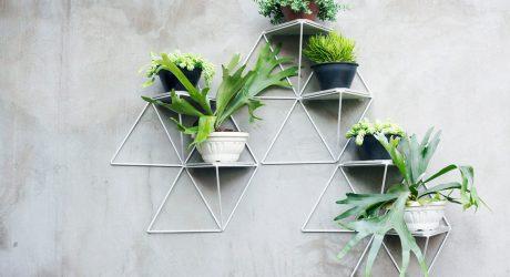 Garden Modules by Luisa + Lilian Parrado