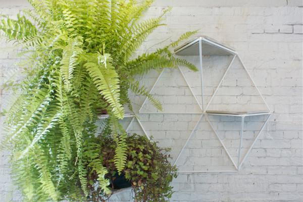 Garden-Module-Luisa-Lilian-Parrado-5