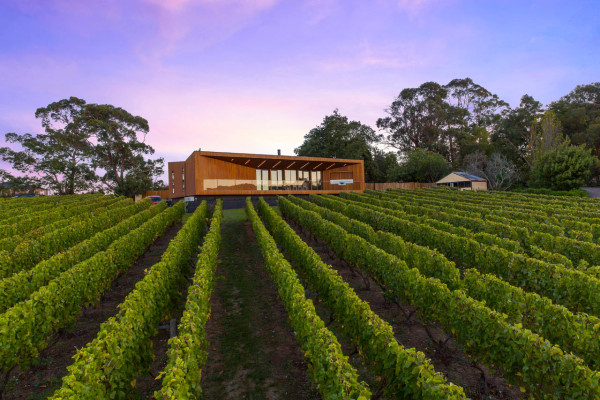 Red-Hill-Residence-Finnis-Architects-15