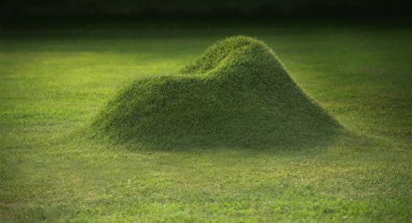 TERRA! The Armchair Made From Grass