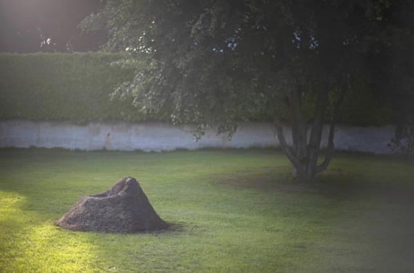 Terra-Grass-Armchair-17