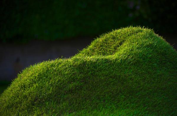 Terra-Grass-Armchair-2