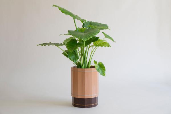 2-Storey-Planter-Kunsik-Choi-6