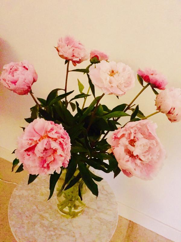 F5-Margriet-Vollenberg-4-flowers