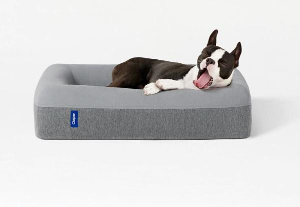 casper_dog_mattress
