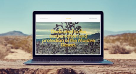 How to Choose the Best Squarespace Template: The Only Three Tips You'll Need