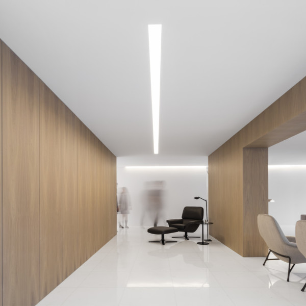 House between the pine forest by fran silvestre   design milk