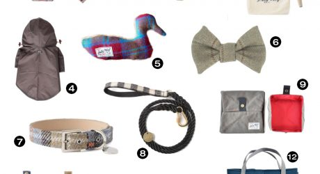 Must-Have Accessories for Fall from Scotch & Hound
