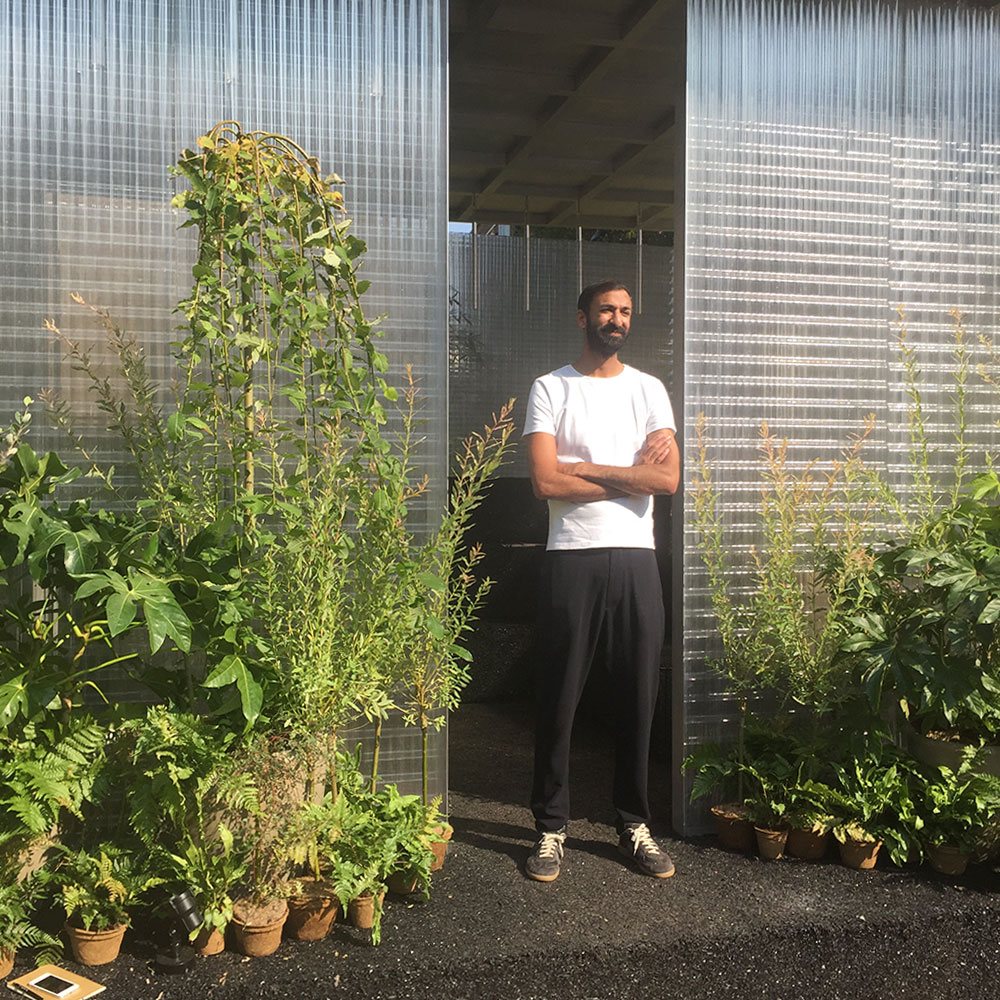 LDF16: A Forest in the City