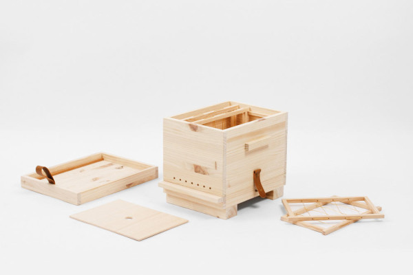 Pupa-wooden-beehive-Octavio-Barrera-1a