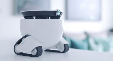 The Roboming Fellow Is a Personal Robot Friend